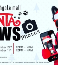 Santa Paws Photos 2 days only! Come down to @northgateyqr Sunday Nov.27th and Dec 11th from 12PM -4PM! #dogsandcats #animallover #santa #socute