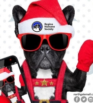This Sunday is your final day to snap 📷 your furbabies with Santa from 12-4! 🎅🏼🐶 #santapawsphotos @reginahumanesociety